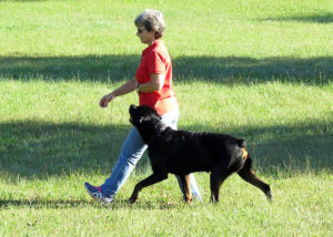 Patrice Leipham and her fabulous Rottweiler Tubbs